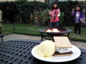 It doesn't get any better then S'Mores and Mantecado Ice Cream!